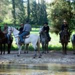 טיול ג'יפים וטיול סוסים